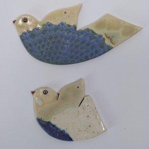 ptaszki bieszczadzkie